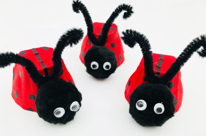 Kids Crafts Ladybird Egg Cup with antennae