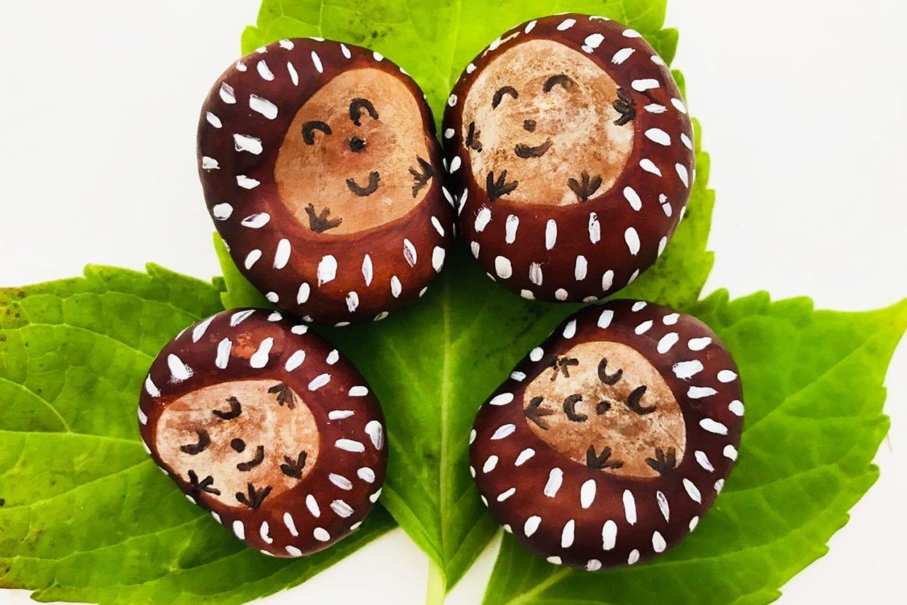conker craft - cutest conker hedgehogs