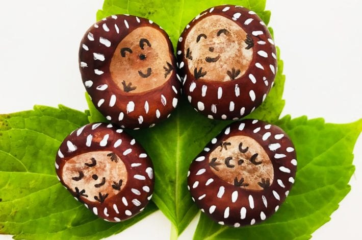 conker craft - cutest conker hedgehogs