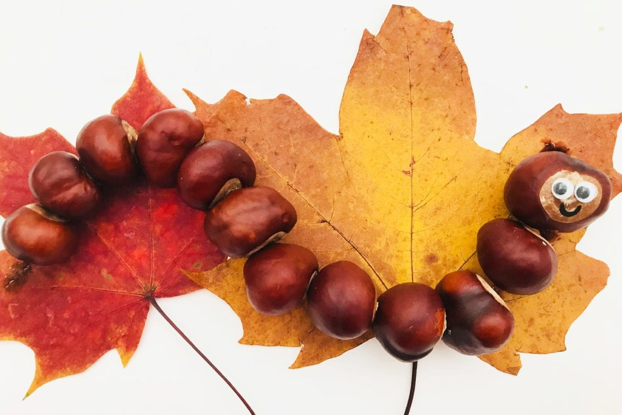 wriggly wiggly conker caterpillar - autumn craft for kid