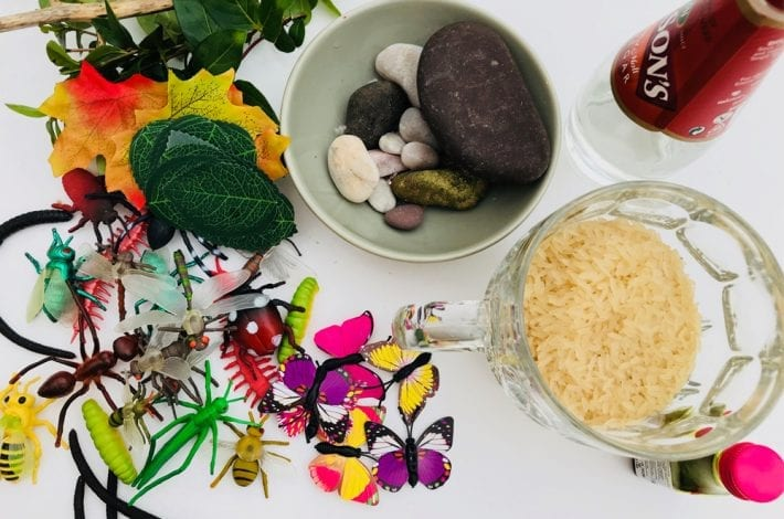 Minibeast sensory tray - make this minibeast activity using dried rice. A great toddler activity to learn about insects.