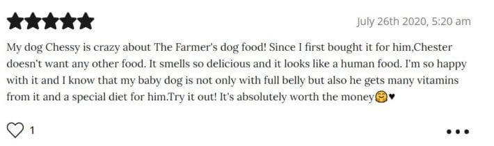 The Farmers Dog review - best fresh dog food - Doroteya S