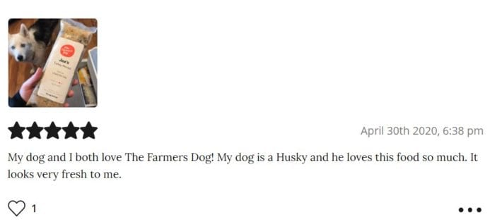 The Farmers Dog review - best fresh dog food - Shelby W