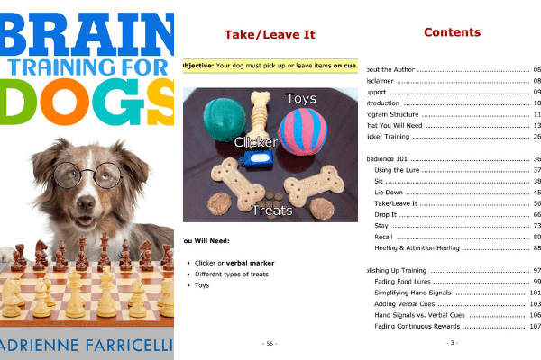 Brain training for dogs review i