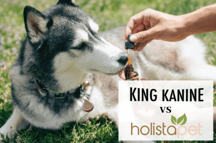 Holistapet vs King Kanine - Holistapet review - King Kanine review - hemp oil vs cbd oil for dogs 3