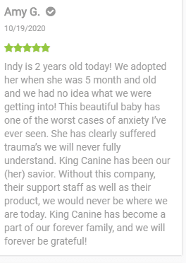 King Kanine review - cbd oil for dogs