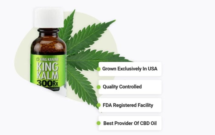 King Kanine review - King Kalm CBD oil