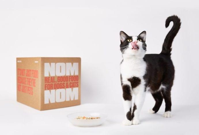 Nom nom cat food review - nom nom fresh cat food - is nom nom good for cats
