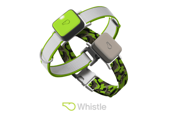 Whistle review - whistle location tracker - Whistle activity tracker