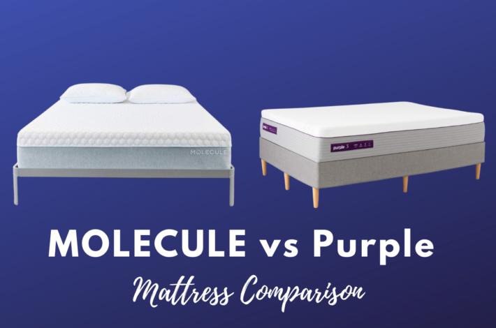 MOLECULE vs Purple mattress comparison