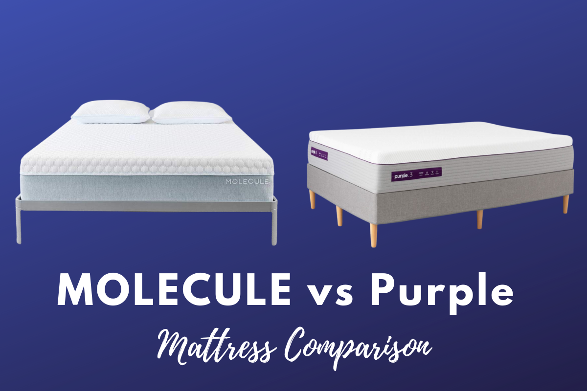 MOLECULE vs Purple mattress comparison