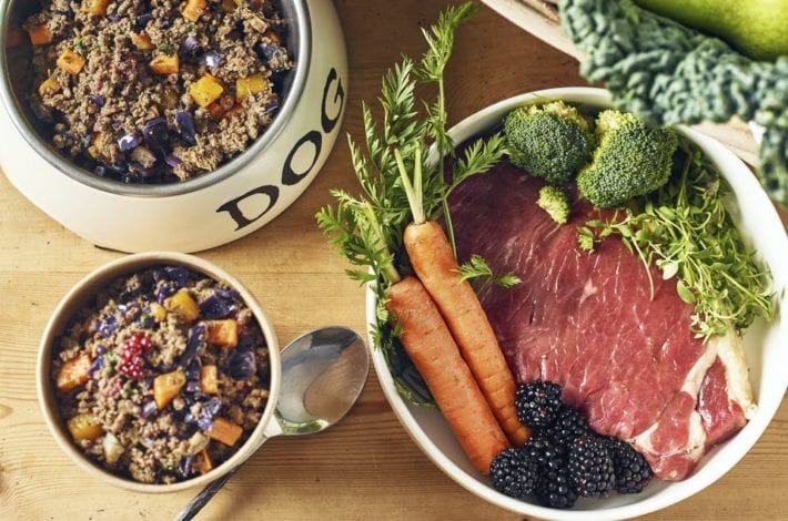 Different Dog Food Review